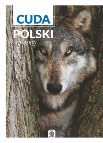 Cuda Polski. Zwierzęta - okładka książki