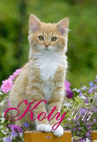 Kalendarz 2017. Koty (A3) - okładka książki