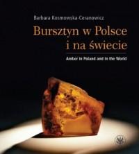 Bursztyn w Polsce i na świecie. Amber in Poland and in the World - okładka książki