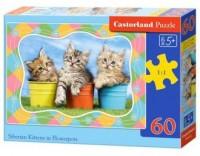 Puzzle 60 kotki w doniczkach - zdjęcie zabawki, gry