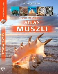 Atlas muszli - Maja Prusińska - okładka książki