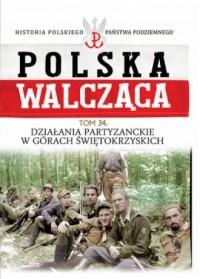 Działania partyzanckie w Górach - okładka książki