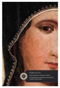Imagines pictae. Studia nad malarstwem gotyckim w Polsce - okładka książki
