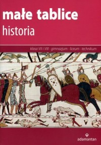 Małe tablice. Historia - Wydawnictwo - okładka podręcznika