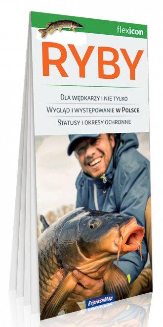 Ryby - okładka książki