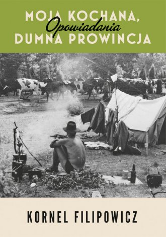 Moja kochana dumna prowincja - okładka książki