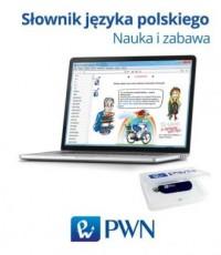 Pendrive - Słownik języka polskiego - okładka książki