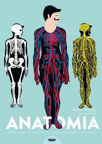Anatomia. Obraz ludzkiego ciała - okładka książki