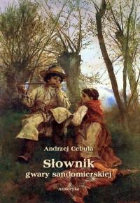 Słownik gwary sandomierskiej - okładka książki