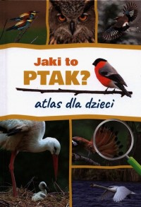 Jaki to ptak? Atlas dla dzieci - okładka książki