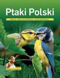 Ptaki Polski. Mała encyklopedia - okładka książki