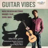 Guitar vibes - okładka płyty