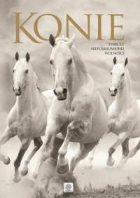 Konie. Album - Wydawnictwo - okładka książki