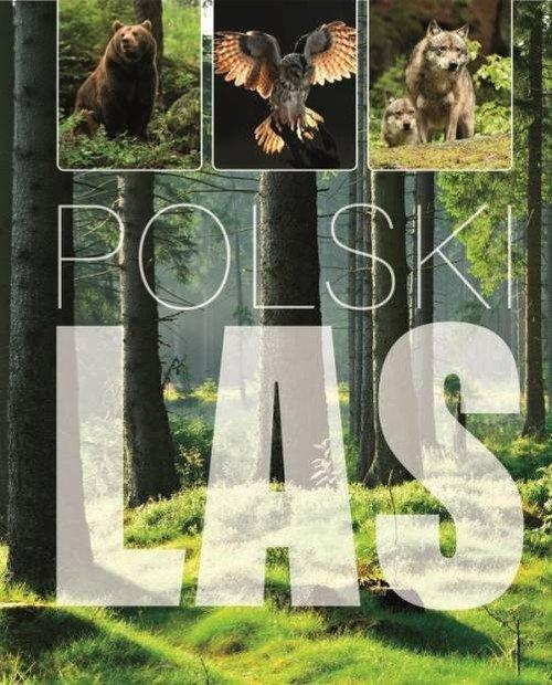 Polski Las - okładka książki