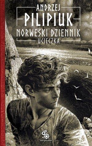 Ucieczka. Cykl Norweski dziennik. - okładka książki
