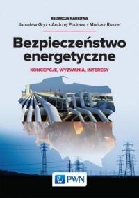 Bezpieczeństwo energetyczne. Koncepcje, wyzwania, interesy - okładka książki