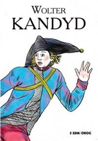 Kandyd - Wolter - okładka książki