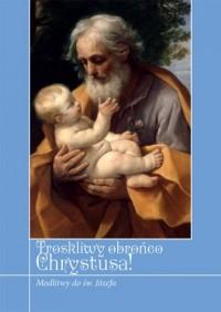 Troskliwy obrońco Chrystusa! Modlitwy - okładka książki