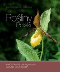 Rośliny Polski - Barbara Sudnik-Wójcikowska - okładka książki