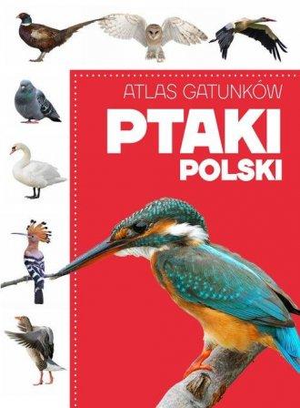 Atlas gatunków. Ptaki Polski - okładka książki