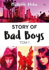 Story of Bad Boys. Tom 1 - okładka książki