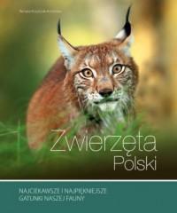 Zwierzęta Polski - Renata Kosińska - okładka książki