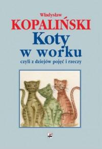 Koty w worku, czyli z dziejów pojęć i rzeczy - okładka książki