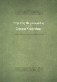 Perspektywy dla sprawy polskiej w opini Zygmunta Wielopolskiego. w świetle korespondencji do Henryka Lisickiego (1877-1881) - okładka książki