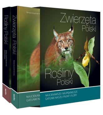 Rośliny Polski i Zwierzęta Polski - okładka książki