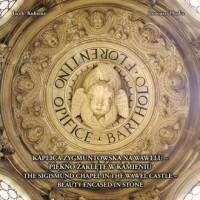 Kaplica Zygmuntowska na Wawelu. Piękno zaklęte w kamieniu - okładka książki