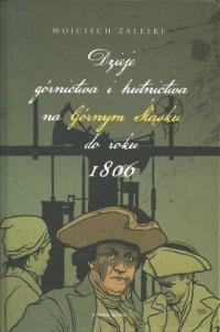Dzieje górnictwa i hutnictwa na Górnym Śląsku do roku 1806 - okładka książki