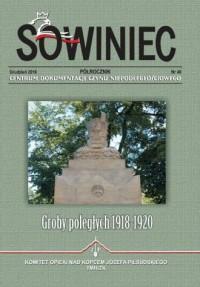 Sowiniec 2016/49. Groby poległych 1918-1920 - okładka książki