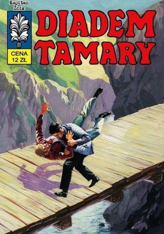 Kapitan Żbik. Diadem Tamary - okładka książki