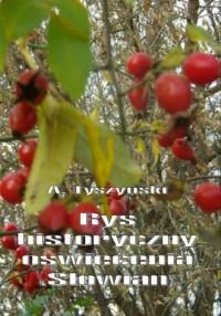Rys historyczny oświecenia Słowian - okładka książki