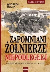 Zapomniani żołnierze Niepodległej. Polskie wojsko w Rosji 1914-1920. Seria: Nasza historia - okładka książki