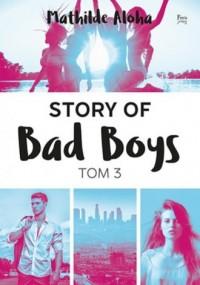 Story of Bad Boys. Tom 3 - okładka książki