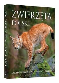 Zwierzęta Polski. Szczegółowe opisy 300 gatunków - okładka książki
