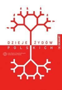 Dzieje Żydów Polskich - okładka książki