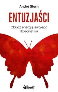 Entuzjaści. Obudź energię swojego dzieciństwa - okładka książki