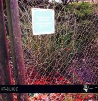 Pierzchające ogrody - okładka książki