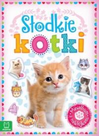 Minialbum z naklejkami. Słodkie kotki - okładka książki