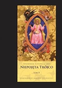 Niepojęta Trójco. Tom II - okładka książki