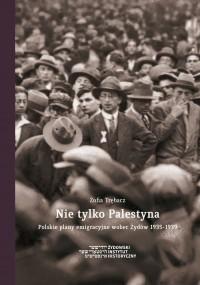 Nie tylko Palestyna. Polskie plany emigracyjne wobec Żydów 1935-1939 - okładka książki