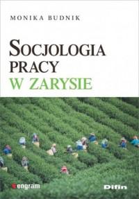 Socjologia pracy w zarysie - okładka książki