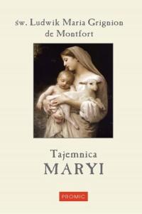 Tajemnica Maryi - okładka książki