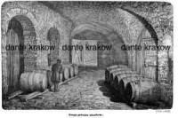 Druga piwnica okseftowa - zdjęcie reprintu, mapy