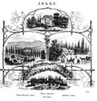 Widok Zborowa i Solca. Pałac w Zborowie. Wieś Solec. Łazienki w Solcu - zdjęcie reprintu, mapy