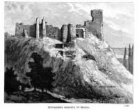 Zwaliska zamku w Solcu - zdjęcie reprintu, mapy