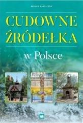 Cudowne źródełka w Polsce - okładka książki