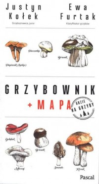 Grzybownik - Justyn Kołek - okładka książki